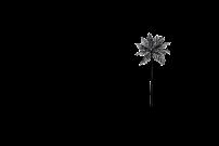 TG Logo Black